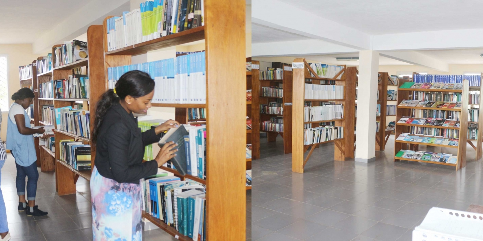 Wokaka Library